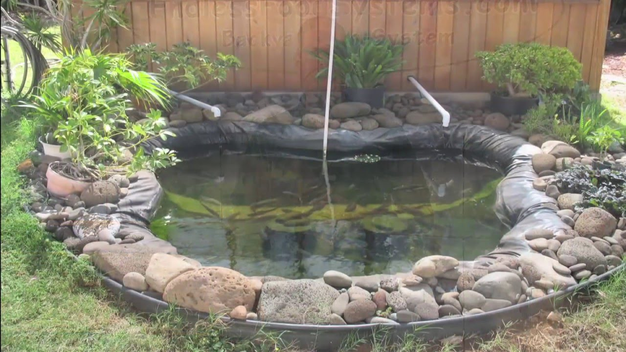 How To Build An Aquaponics System Do It Yourself Video Youtube