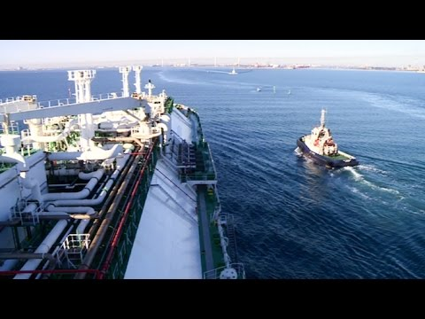 Quand les géants des mers entrent dans la rade de Marseille