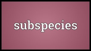 Subspecies Meaning