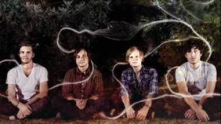 Grizzly bear - Slow life