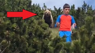 Weekly Best Videos Compilation # 2. The boy leaves the bear
