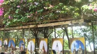 Thailands Blue Tiger Trailer