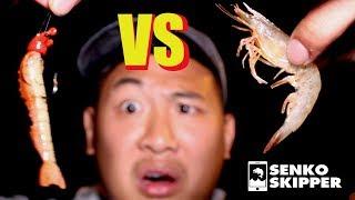 Florida Fishing: Artificial Gulp Shrimp VS Live Shrimp