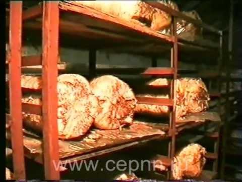продам оборудование для выращивания грибов