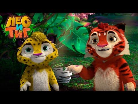 Лео и Тиг — Земляной зуб —Серия 44 | Мультики для детей