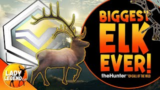 Bow Hunting a GIANT Diamond ROCKY MOUNTAIN ELK Can Be Very Tricky!  Call of the Wild
