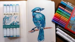 Blue jay in Markers Sketching Tutorial