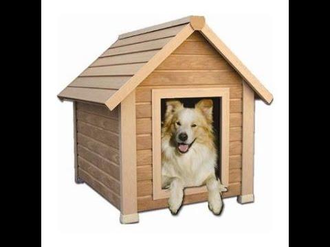 Casitas para perros 20 modelos de locura youtube Modelo de viviendas para construir