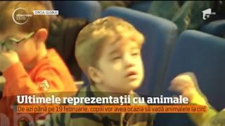 Ultimele reprezentații cu animale la Circul Globus