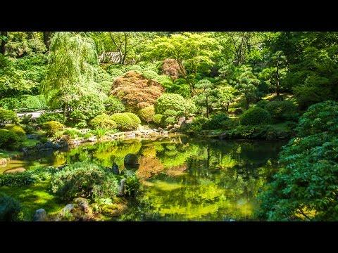 Música Relajante de la Naturaleza con Sonidos de Agua: Meditación, Yoga, Tai Chi, Reiki, Pilates