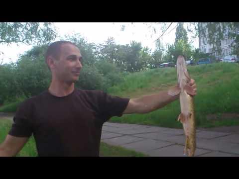 Fishing in Ukraine (щука, киев, рыбалка)