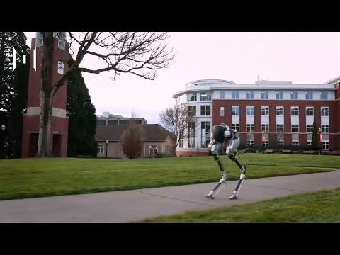 THE MOMENTUM : Moment of the Day 16217 : หุ่นยนต์เดินได้ที่สามารถส่งของและช่วยชีวิตมนุษย์
