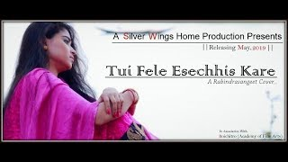 Tui Fele Esechhis Kare COVER by Silver Wings - The Band