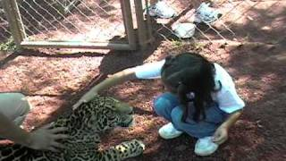 Karin y Jaguar