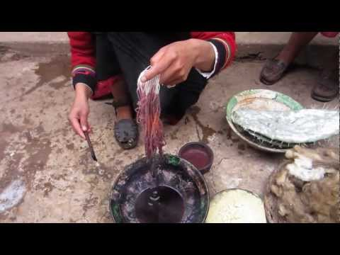 Cochinea Red Dye - The Use of Cochineal Beetles as Natural Fabric Dye in Chinchero, Peru.