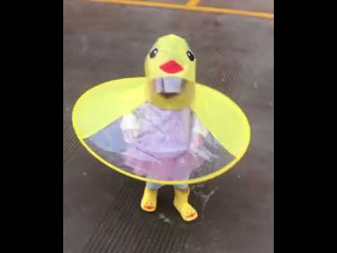 Little Ducky Raincoat Youtube