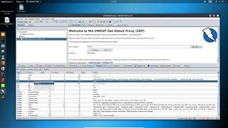 oWASP ZAP Demo finding vulnerability using ZAP