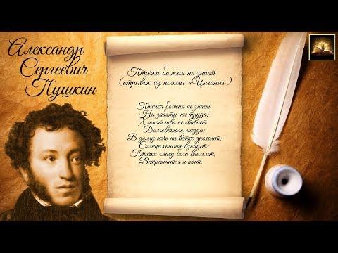 """Стихотворение А.С. Пушкин """"Цыганы"""" Птичка божия не знает (Отрывок) (Стихи Русских Поэтов) Аудио"""