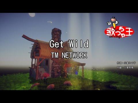 【カラオケ】Get Wild/TM NETWORK
