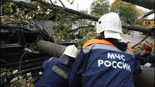 Стихія в Татарстані. Зривало покрівлі, ламало дерева. Більше 300 осіб на відновлювальних роботах.