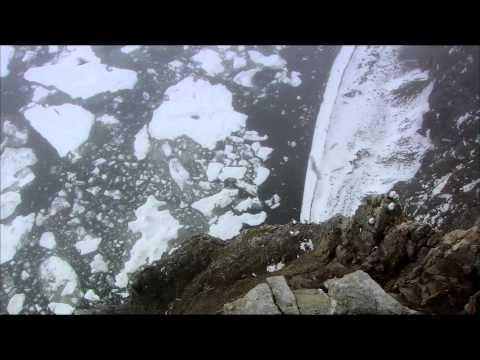 Дикая природа России 5. Arctic / Арктика.1080р