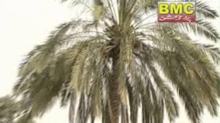 Chlombik E Banor | Hafeez Ali Baloch | Vol 9 | Balochi Song | BalochiWorld