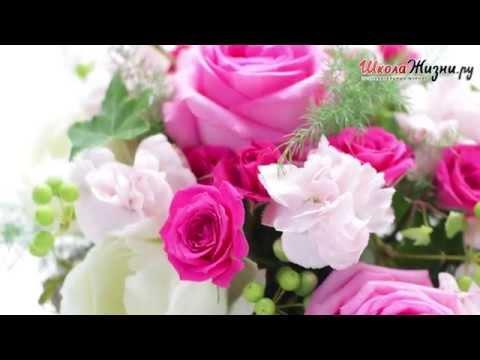 Самые красивые цветы фото