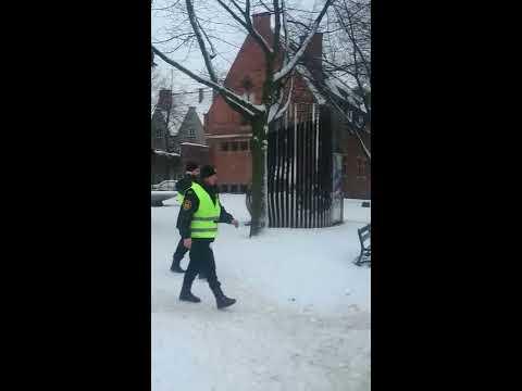Słodka Interwencja Straży Miejskiej W Gdańsku