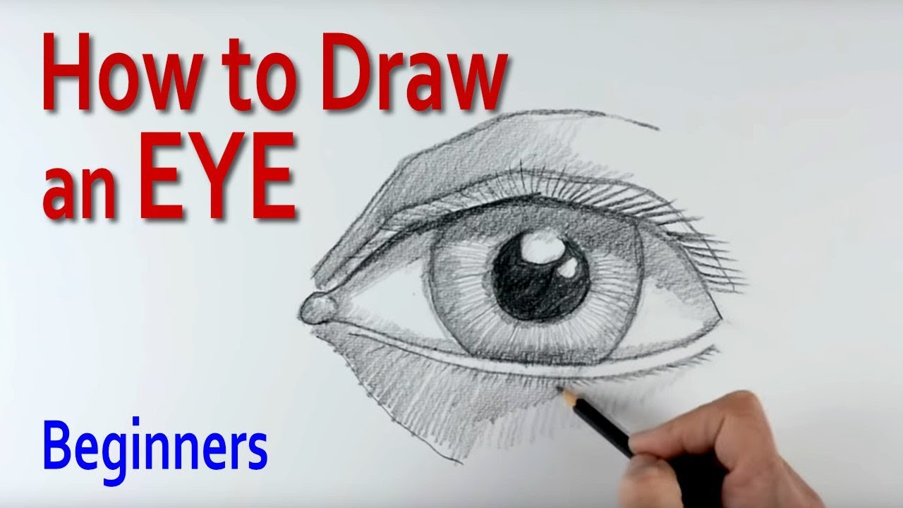 Easy Drawing Human Eye