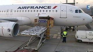 Air France добьется от пилотов производительности через суд - economy(, 2015-06-16T18:07:21.000Z)