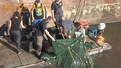 Fischrettungsaktion in Greetsiel - 03.08.2018 - log