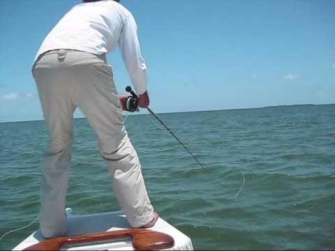 Flying Tarpon Fly Fishing