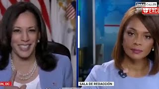 'I'm Not Finished': Harris Rips Reporter For Interrupting Her After Asking About Border Visit