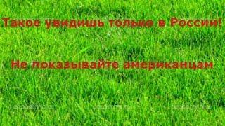 Такое увидишь только в России! Не показывайте американцам. Новости Украины,России Сегодня(, 2015-09-23T16:34:09.000Z)