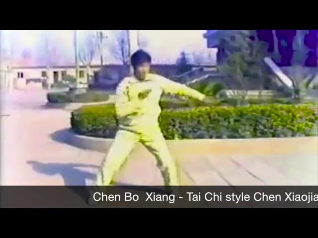 Chen Boxiang  - Tai Chi style Chen Xiaojia 1990's [陈氏太极拳小架 Taijiquan style Chen Xiaojia]