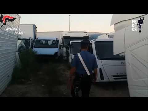 Cerignola cuore del traffico di mezzi rubati. [VIDEO] I Carabinieri scoprono una centrale di riciclaggio