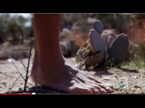 The Tarahumara - Running Secret Revealed