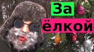За новогодней ёлкой в зимний лес 😉😌😘 Прикол