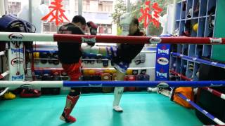 香港泰拳理事會 - 初級教訓班教材 第一節