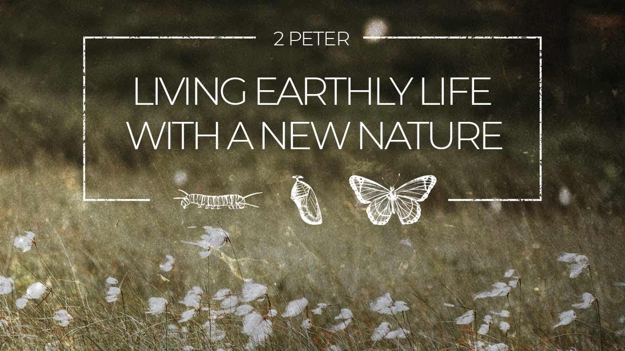 Cedarview   LIVING ON EARTH WITH A DIVINE NATURE #15