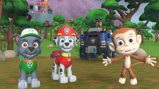 PAW Patrol On a Roll - Chase, Skye Rescue Mission Save Monkeys  - Fun Pet Kids Games