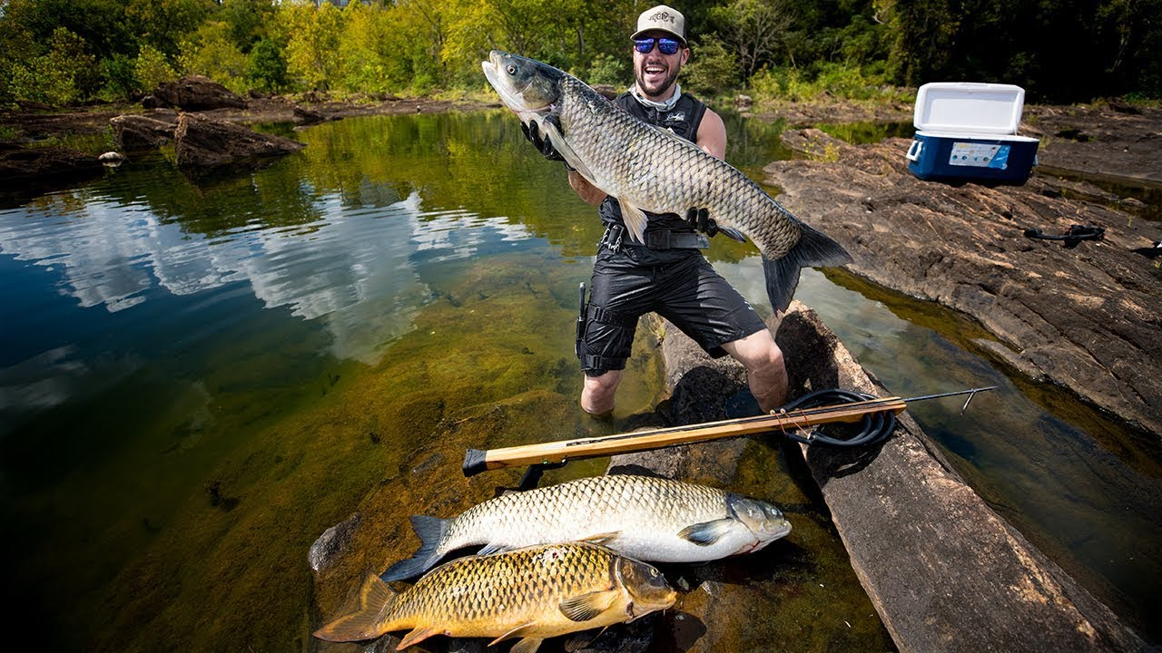 spearfishing-giant-carp-to-feed-local-families-underwater