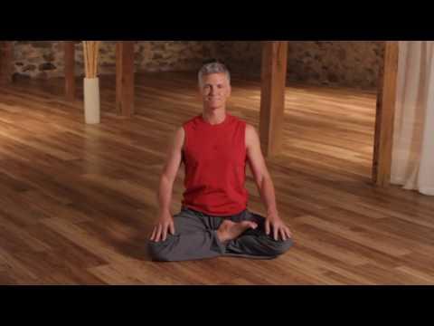 1.)  Complete Pranotthan Yoga Class w Devarshi Steven Hartman