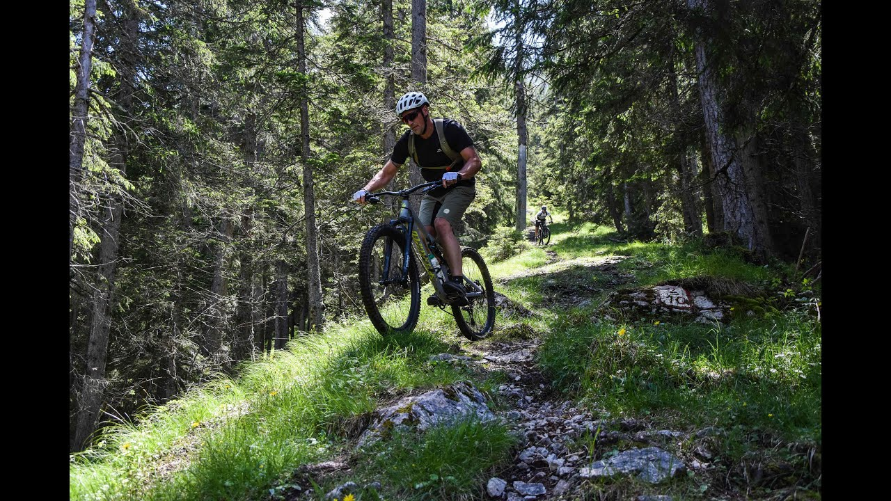 Mountainbike - Upperaustria