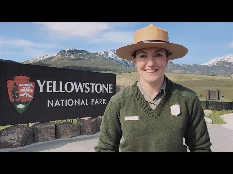 Tips for visiting Yellowstone this summer