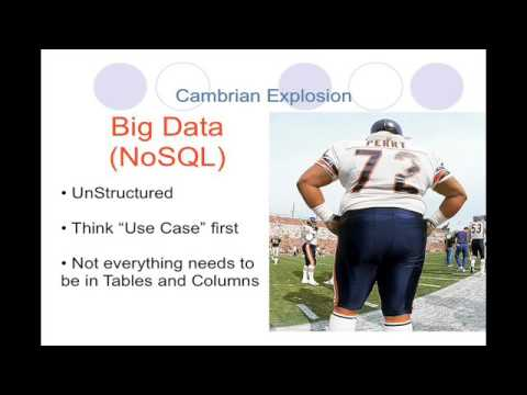 The Cambrian Explosion - Keynote - NoSQL East 2009 Conference -  John Willis