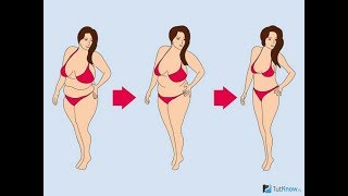 сколько в день надо сжигать калорий чтобы похудеть