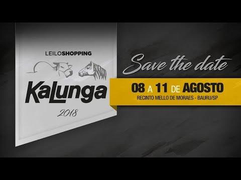 Lote 100   Ferrari do Kalunga   KLGA 2556