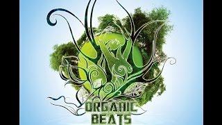 V/A Organic Beats Vol.4 [Full Album] - ALTAR RECORDS