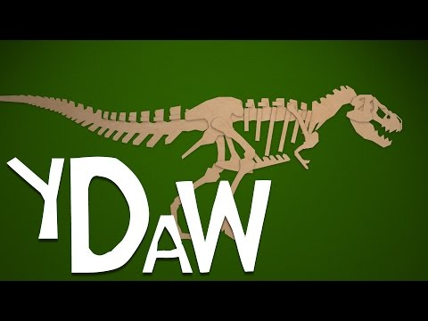 Tyrannosaurus Skeleton: Your Dinosaurs Are Wrong #10